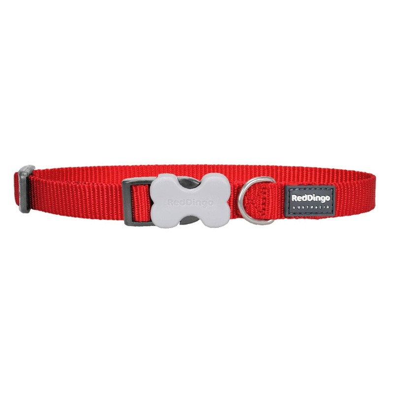 Red Dingo Classic Bucklebone Dog Collar - Medium