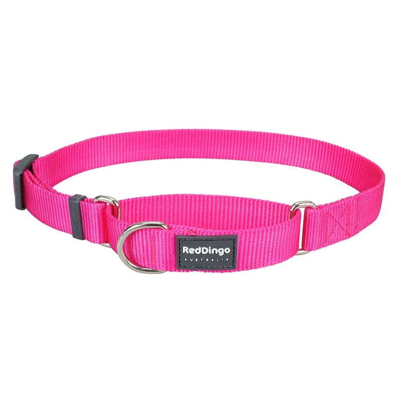 Red Dingo Classic Martingale Dog Collar - Small
