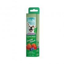 Tropiclean Clean Teeth Oral Care Gel - Berry Fresh