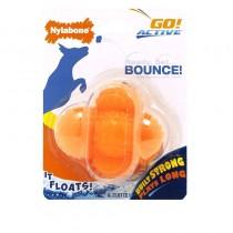 Nylabone Go! Active Oddball Dog Toy