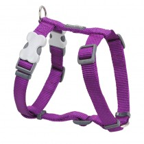 Red Dingo Classic Purple Harness for Dogs
