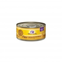 Wellness Complete Health Pate - Salmon & Trout Entree Canned Cat Food