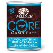 Wellness CORE Ocean - Whitefish, Salmon & Herring Canned Dog Food