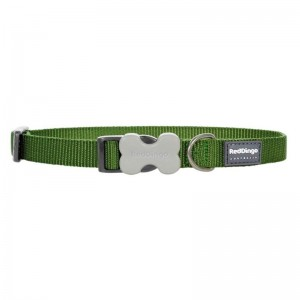 Red Dingo Classic Bucklebone Dog Collar - Small